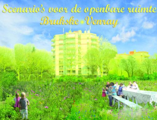 Scenario's voor de openbare ruimte van de wijk Brukske